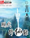 小说:现代修仙录,作者:金丹大道